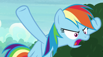 "Rainbow Dash ""done with each other!"" S8E17"