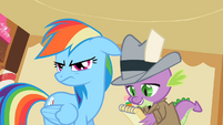 Rainbow Dash ear drop S2E8
