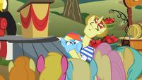 Rainbow Dash getting cheeks squished S02E15
