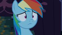 Rainbow Dash with a blank stare S6E15