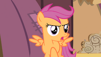 Scootaloo '...can't get me off the ground' S4E05