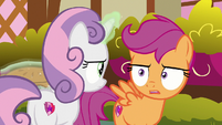 Sweetie and Scootaloo look at each other S9E23