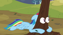 Tree eyes II S2E22
