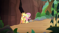 AJ and Fluttershy emerge from mountain tunnel S8E23