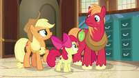 Apple Bloom -talk to both our grandparents- S7E13