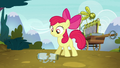Apple Bloom finds empty twittermite canister S5E4.png
