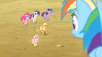 Applejack 'We've gotta round up these beasts with wings first' S4E07