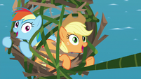 Applejack and Rainbow looking hopeful S8E9