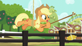 Applejack hanging from the rope again S6E10.png