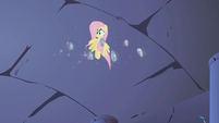 Fluttershy confused S01E02