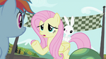 Fluttershy talking to Rainbow Dash S2E07