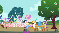 Foal's birthday party S4E23