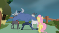 Iron Will and his goats debate on Fluttershy' statement S2E19.png
