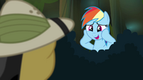 "Rainbow Dash ""I am suuuuuch"" S4E04"