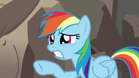 Rainbow Dash feeling sorry for A. K. Yearling S7E18