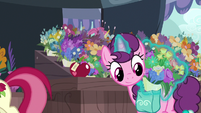 Sugar Belle puts flowers in her saddlebag S9E23