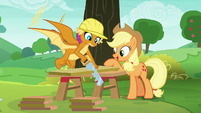 Applejack supervising Smolder's work S8E9