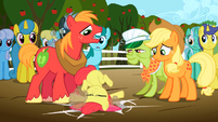 Big McIntosh drops Apple Bloom S2E15