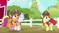 Cutie Mark Crusaders excited for cookie drive S6E15.png