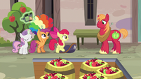 Cutie Mark Crusaders removing their disguises S7E8