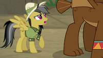 "Daring Do ""I encountered some like this"" S9E21"