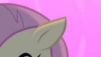 Flutterbat's ear returns to normal S4E07