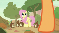 Fluttershy and squirrels look at Applejack S8E23