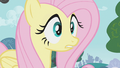 Fluttershy surprised by what the ponies say S1E07.png