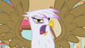 Gilda talks back to Rainbow Dash S1E05.png