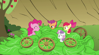 Pinkie Pie eating the lettuce S3E04