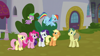 "Rainbow Dash ""Earth ponies and Pegasi"" S9E25"