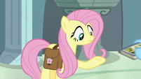 Rainbow snatches Fluttershy's book away S9E21