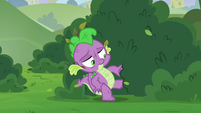 Spike coming out of the bushes S8E24