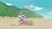 Spike sees Rarity's blanket blowing away EGFF