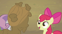 Apple Bloom 'almost won' S2E05
