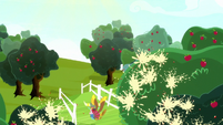 Apples popping across Sweet Apple Acres S8E18