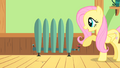 Fluttershy humidifier S01E22.png