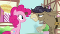 Pinkie Pie And Cranky 01 S02E18.png