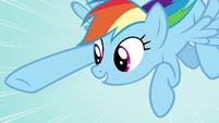 Rainbow Dash -We need those leaves- S05E05