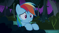 Rainbow Dash worried for Daring Do S4E04