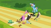 S02E07 Zwierzęta na linii startu