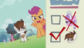 Scootaloo walking with Pipsqueak; ballot paper shows Diamond's head crossed out S5E18.png