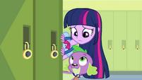 Twilight e Spike se olham após o aviso de Fluttershy EG