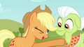 "Applejack ""all the right reasons"" S3E8.png"