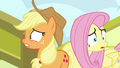 Applejack and Fluttershy look around nervously S6E20.png