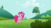Pinkie Pie 'It's that way' S3E3