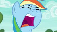Rainbow Dash shouts --come on!-- again S6E18