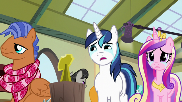 File:Shining Armor and Cadance looking at shield stand S7E3.png