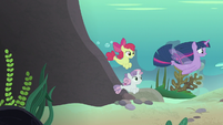 Twilight and CMC follow Terramar to Seaquestria S8E6