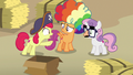 "Apple Bloom ""our ship be leavin' port!"" S7E8.png"